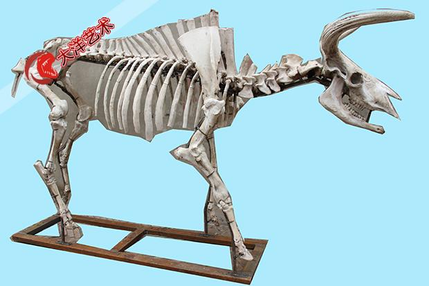 仿真骨架模型展